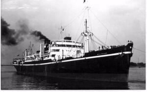 SS Beguine gets her name